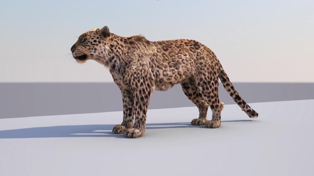 lion 3d model free